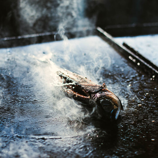 High angle view of smoke emitting from grilled insect on hot metal