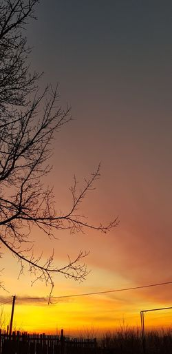 Silhouette bare tree on field against sky during sunset