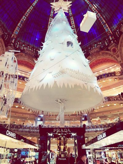 Illuminated Night City Cityscape Beautiful Effects Of Time Galleries Lafayette Paris L'amour La Vie Life Life In Motion Joy Shopping Mall Built Structure Architecture Prada GUERLAIN Chanel Noël Christmas Tree Christmas Lights Christmas Decorations Sapin De Noël Handmade For You