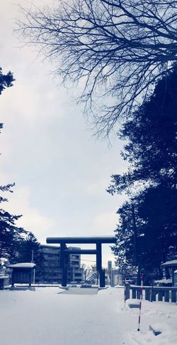 """It's a japanese shrine's gate """"TORII"""" Shades Of Winter Shrine Japanese Shrine EyeEmNewHere IPhoneography Japan Tree Built Structure Snow Winter Sky Cold Temperature Day"""