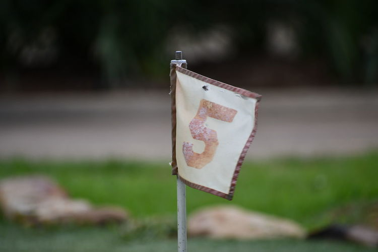 Close-up of wooden post on field