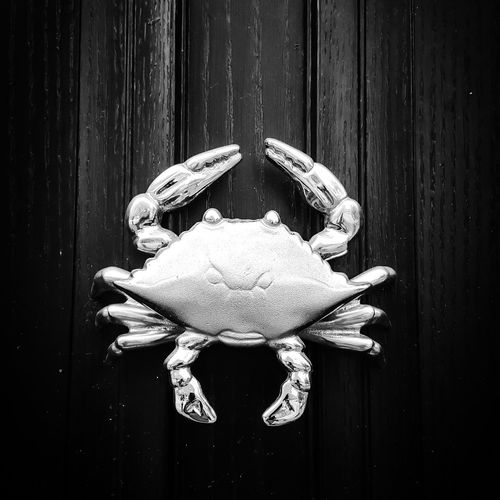Wood - Material No People Close-up Day Crab Silvered Black And White Photography Black Background Getting Inspired Enjoying Life Outdoors Creativity No Colors Blackandwhite EyeEm Best Shots Animal Themes Architecture