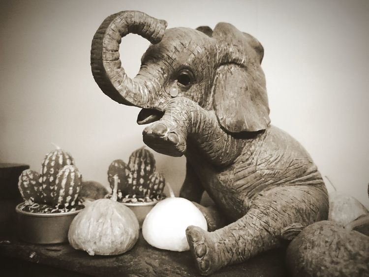 No People Statue Sculpture Elephant Nature Close-up Artistic Photo Invention White Background Still Life Candle Cactus Pebble Tears Crying Sadness Emotional Animal Mammal Sepia_collection Sepia Aged