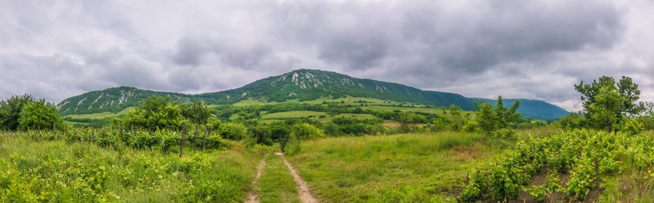 Nature Hungary Landscape Cloud - Sky Countryside Grass Mountain Scenics Tranquility Beauty In Nature Cloudy