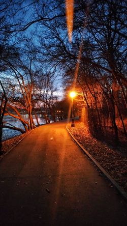 Would you enjoy a walk in a city park at night? Transportation Tree No People Outdoors Nature Road Sky The Way Forward Beauty In Nature Cold Temperature Illuminated Day Park Park - Man Made Space Parks And Recreation Park View Walking Alone... Park Walking