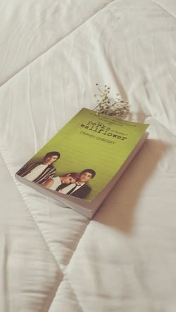  Reading The Perks Of Being A Wallflower