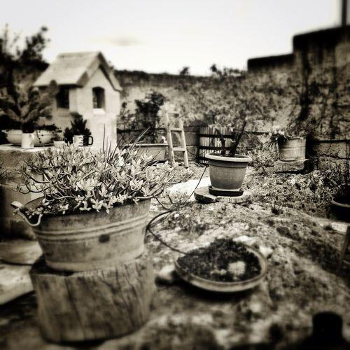 Blackandwhite AMPt - Abandon Abandoned Places