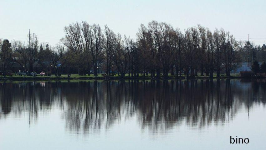 ACROSS THE LAKE Morning Shoot Distant Reflection Grey Morning Beautiful Shot Lake Cadillac Pure Michigan