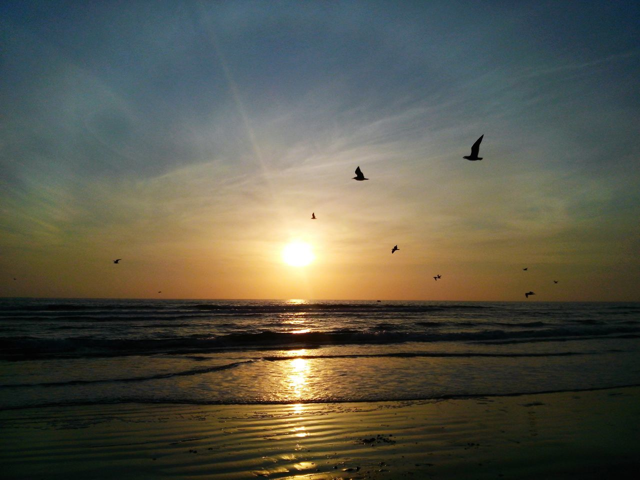 sunset, sea, horizon over water, beauty in nature, scenics, beach, sun, nature, sky, water, tranquil scene, silhouette, idyllic, tranquility, bird, outdoors, sunlight, reflection, flying, sand, cloud - sky, no people, vacations, travel destinations, animal themes, wave, day