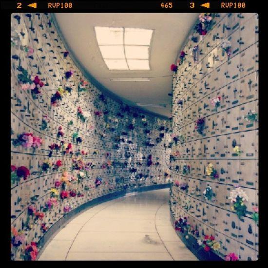 En Chacarita Cementeries Cementerios  Cememterio Cementeriodelachacarita
