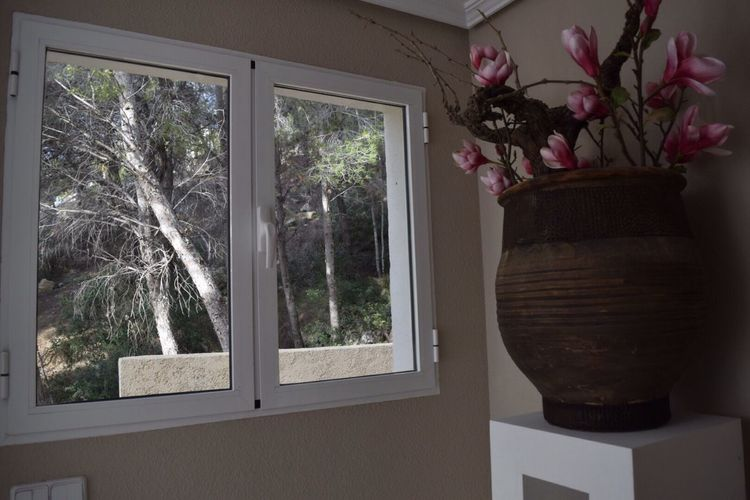 Lifestyles Indoors  Trees Window Design Style In And Out Decoration Still Life TakeoverContrast