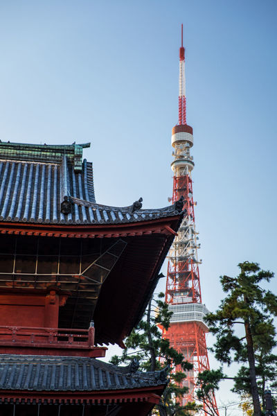 Tokyo Tower Architecture Belief Building Building Exterior Built Structure City Clear Sky Day Low Angle View Nature No People Outdoors Place Of Worship Religion Sky Skyscraper Spire  Spirituality Tall - High Tourism Tower Travel Travel Destinations Tree