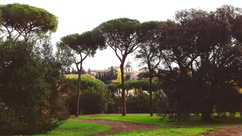 Tree Nature Nature Photography Sky Beauty In Nature Outdoors Scenic Landscape Photography Cityscape Buildings City View  Travel Destinations Tourist Attraction  Roma Rome Italia Italy Naturelovers Path Urbanphotography The Great Outdoors - 2017 EyeEm Awards
