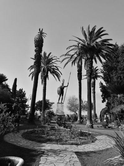 Achilion Palace Achilles Palace Garden Palm Tree Statue Sea