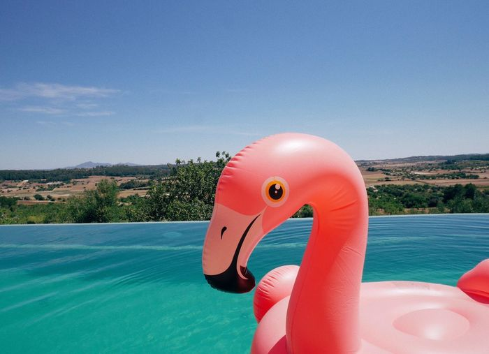 Close-Up Of Inflatable Flamingo On Sea Against Sky