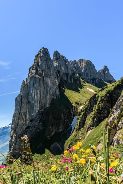 Wanderlust Wandern Hiking Mountain Mountain Peak Mountainview Awesome Swiss Alps Swiss Mountains Myswitzerland Mountain Hiking Mountainlove Nature Beauty In Nature Scenics Naturpur Rock Formation Flower Appenzell Saxerlücke