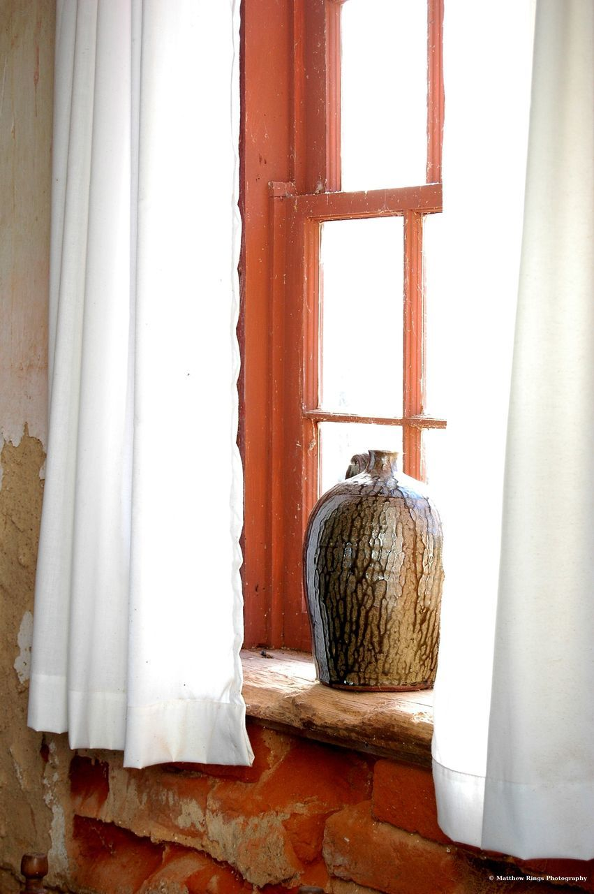 window, indoors, window sill, white color, no people, day, curtain, animal themes, mammal, bird, close-up