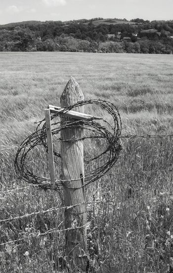 Balade sur les chemins de Sainte Radegonde Blackandwhite Photography Black & White Blackandwhitephotography Blackandwhite Black And White Photography Black And White Black And White Collection  Countryside Country Landscape Champ Field