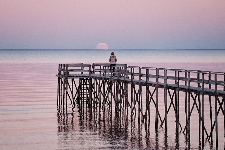 Moon watching. Autumn. Supermoon Pink Moonrise Lake Winnipeg Pier Autumn Colors Fujifilm_xseries Fujixt1 Lune Check This Out