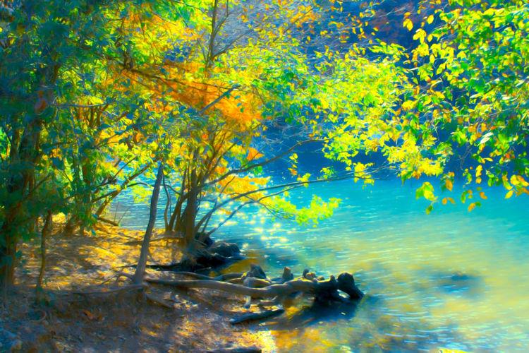 Austin Autumn Blue HDR Lake Lake Austin Red Bud Isle Red Bud Isle River Water