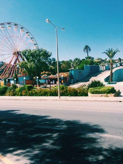 Greece Palm Tree Amusement Park Ferris Wheel Sky Outdoors Amusement Park Ride Arts Culture And Entertainment