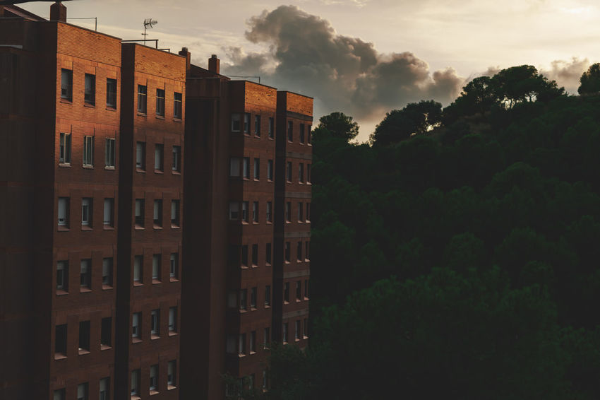 Apartment Architecture Building Building Exterior Built Structure City Cloud - Sky Day Growth Low Angle View Nature No People Outdoors Plant Residential District Sky Sunset Tree Window