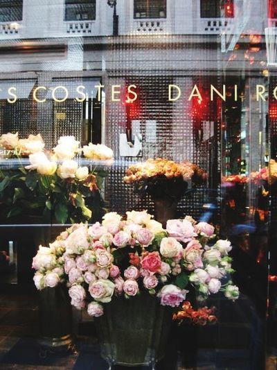 💓paris💓 Street Photography In Paris Paris, France  Beautiful Flowers Roses Showcase Roses Costes Dani Roses-Paris Hotel Costes Glamour Window Reflections Paris ❤ Walking Around Paris Paris Je T Aime France 🇫🇷 Streetphoto_color Cityscapes La Vie En Rose Travel Photography Traveling