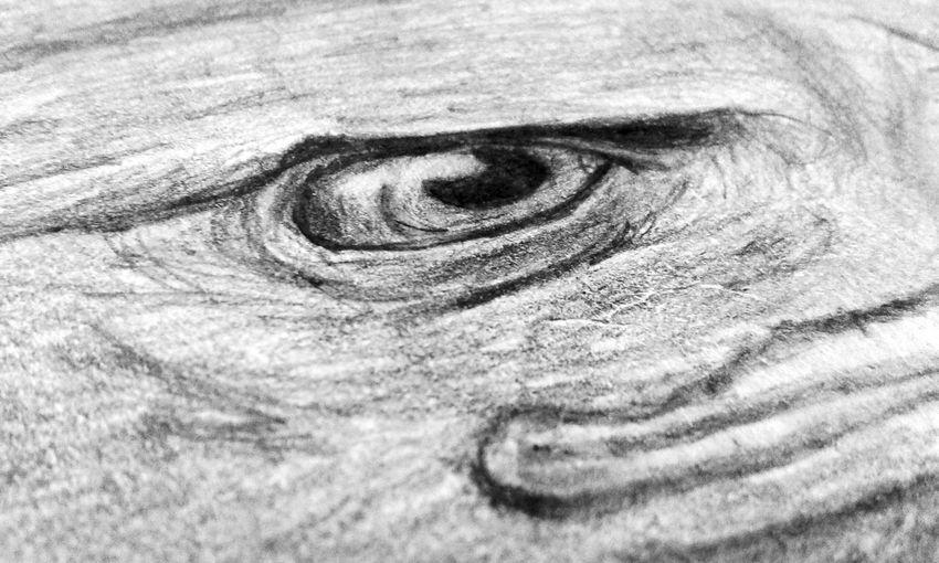 My Best Draw My Drawings Pencil Drawing Animal_collection Hawkeagle Eagleeye Art, Drawing, Creativity Love Eagle Eagle Hello World