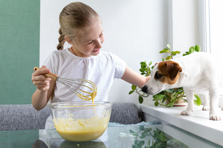 A girl treats dog with whiskey dough from a whisk. hungry dog. for a friend, do not mind. cooking.