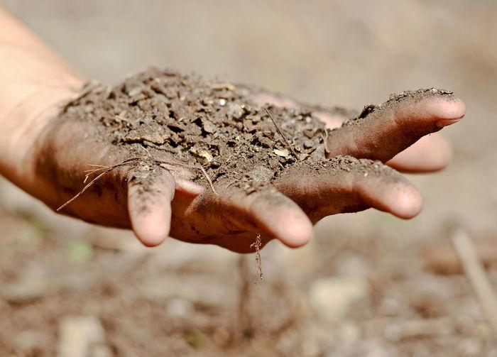 Human hand holding sand