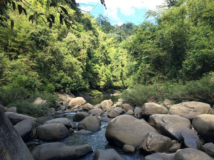 No Filter Phonography  Rocks Tropical Paradise Khao Sok National Park River Silent Cloudy Thailand Djungle