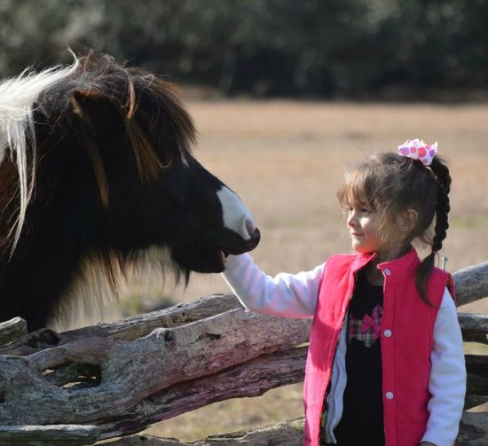 Smiling girl standing by horse at farm