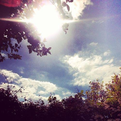 Sunnnnnn! Hallothereoldfriend Love Sun