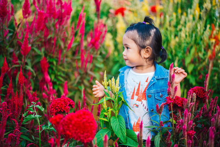 Cute girl standing amidst plants
