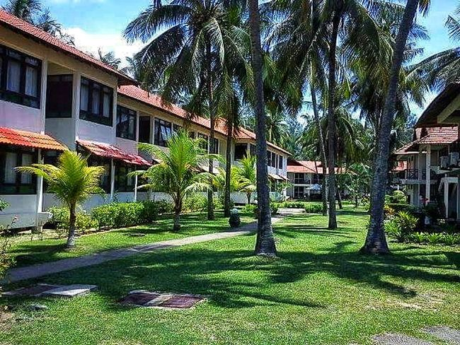 Palm Tree Palm Leaf Vacation Destination Relaxing Tree Sunlight Architecture Building Exterior Grass Day Outdoors Built Structure No People Shadow Growth Nature Sky