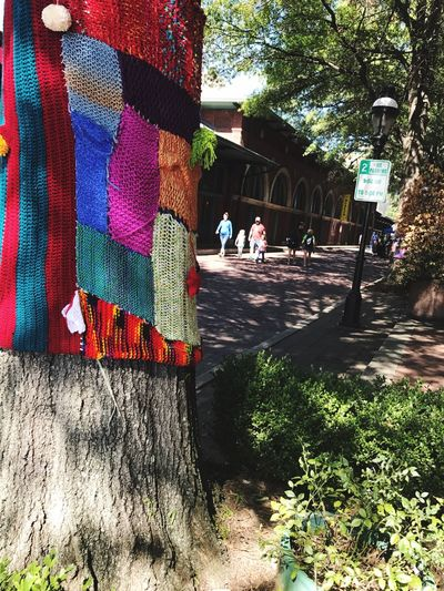Real People Tree Day Outdoors Women Men Architecture Building Exterior Nature Adult People Quilted Tree Quilt Bombing
