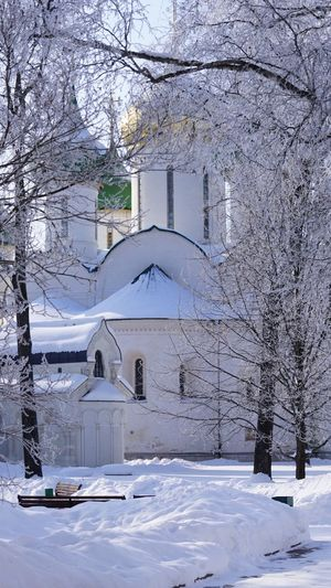 Monastery of Saint Euthymius Orthodoxy Orthodox Church Monastery Religion Snow Cold Temperature Winter Tree Architecture No People Day