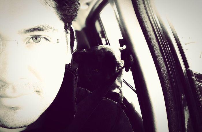 Un día con Hipo en el auto.