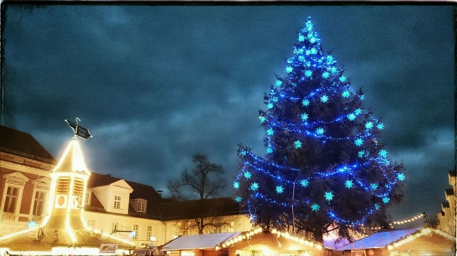 Auf dem Weg zum Weihnachtsmarkt Xmastree Xmastime Christmasmarket Blaue Stunde Weihnachtszeit Potsdam_city