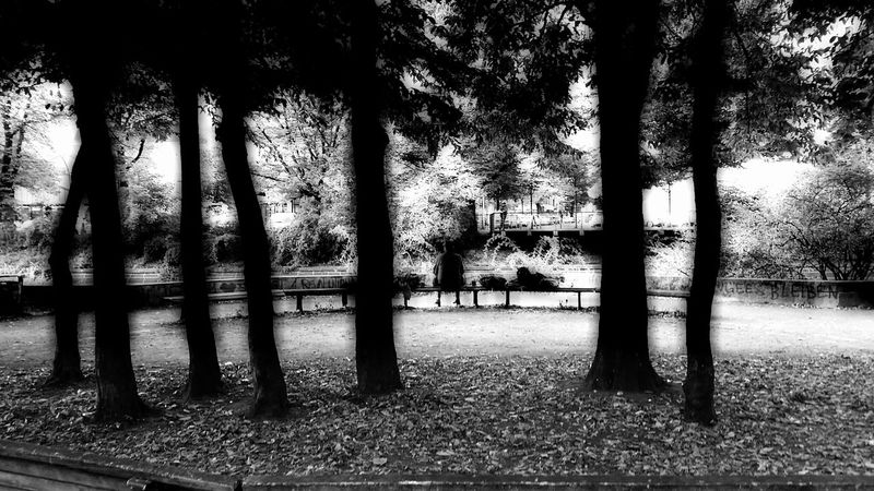 Monochrome B/W Photography Taking Photos Walking Around