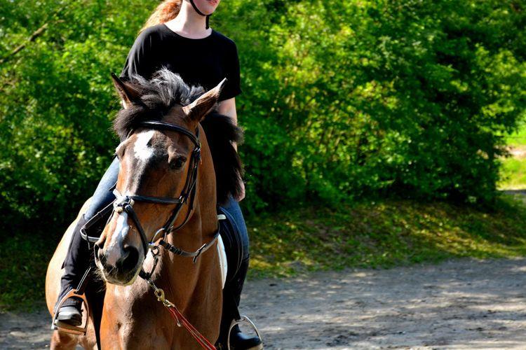Animal Beautiful Herhorse Herlove Lifestyle Nature Sport Traning