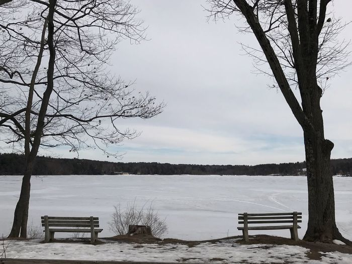 Frozen lake. It's 52 feet deep and keeps its ice a good while. Winter Tranquility Frozen Lake Frozen Water Nature Sky Bare Tree Snow Bench Stockbridge Bowl Berkshires Ladyphotographerofthemonth