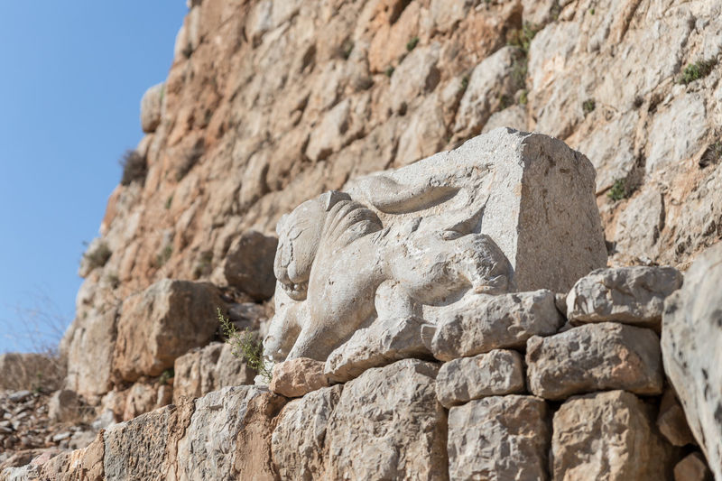 Bas-relief of a lion extruded on a stone in the courtyard of Nimrod Fortress located in Upper Galilee in northern Israel on the border with Lebanon. History Israel Nimrod Fortress Castle Border Stone Material Wall - Building Feature Saladin Beybars Crusaders Ayubids Mamluks Assassins Tower Heritage Travel Destinations National Park Hill Old Ancient Architecture Medieval Ruin Protection Fort Gate