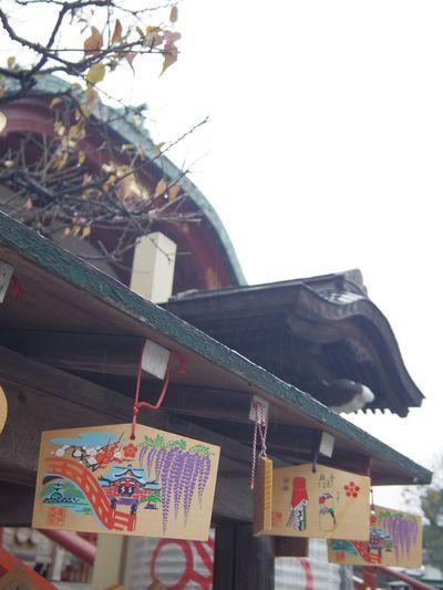 Japan Tokyo Kameido 亀戸天神 Kameido Tenjin Jinja Streetphotography Rain Rainy Days Haze 絵馬 Votive Picture