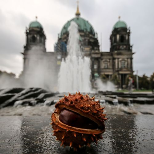 EyeEm Selects Water Dome Architecture Berlin City Cityscape Photography Berlin Mitte Berlin, Germany  The Week On EyeEm Berliner Ansichten Streetphotography Travel Autumn Autumn Colors Chestnut Connected By Travel EyeEmNewHere Lost In The Landscape