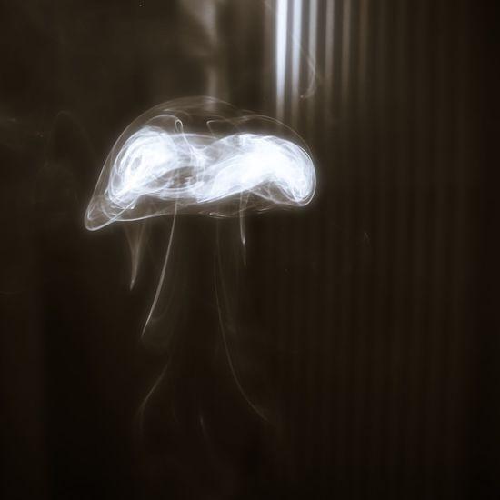Palo Santo smoke - Jellyfish Artistic Photo Perspectvstudio Black-and-white Photography Illuminated Amazon Basin Shamen Smoke Mystical Atmosphere Break The Mold