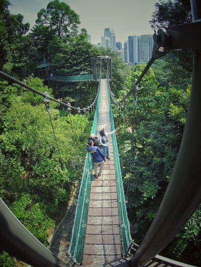 Rear view of man on footbridge