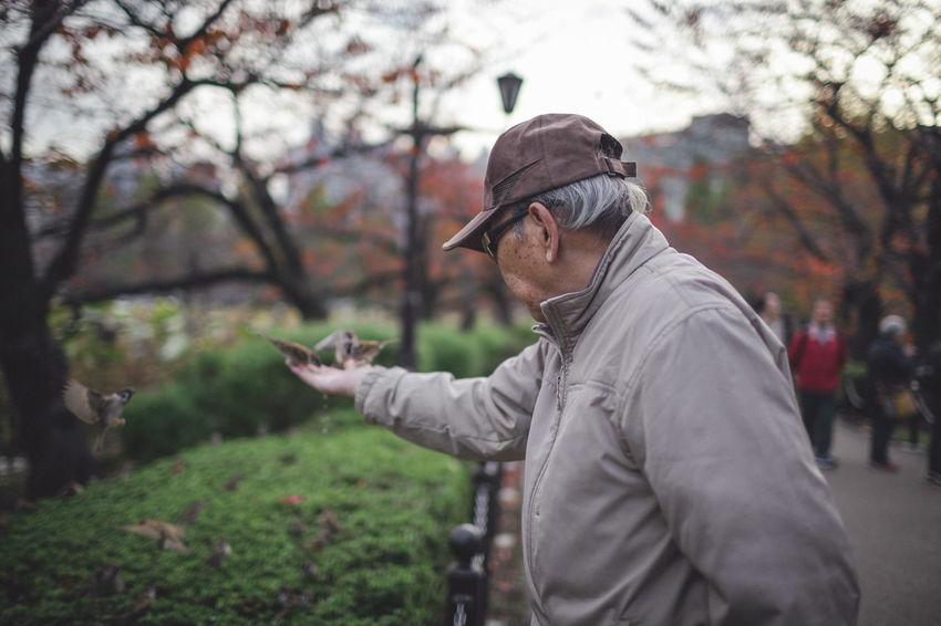 Birds Feeding Birds Japan Japan Photography Japanese  Japanese Culture Old Man Park Street Street Photography Streetphoto_color Streetphotography