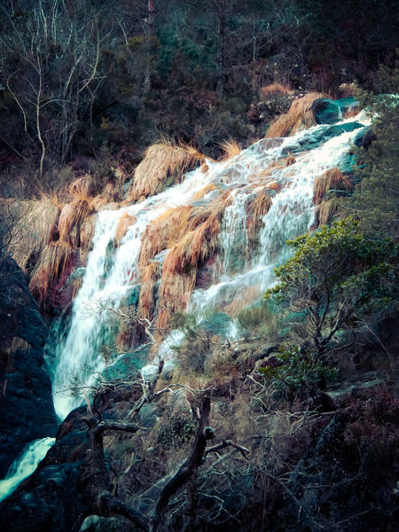Portugal Beauty Beauty In Nature Bertontheroad Day Forest Freshness Geres Landscape Motion Nature No People Outdoors Plant River Riverbank Rock - Object Scenics Stream - Flowing Water Tree Water Waterfall