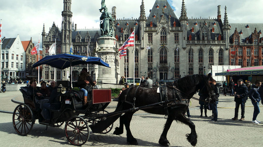 Architecture Belgium Brugge Building Exterior City Day Domestic Animals Horse Horse Cart Mode Of Transport Outdoors People Real People Transportation Travel Destinations